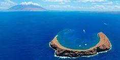 透き通った水と豊富な海の生物たちのおかげで、この島はスキューバダイビングやシュノーリングを楽しむ人にとっての楽園となっている。...