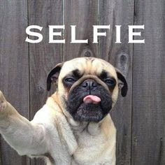 selfıe :)