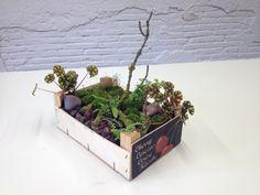 Amb una capsa de fruita es poden fer muntatges tan xulos com aquest. I, a més, reciclem.