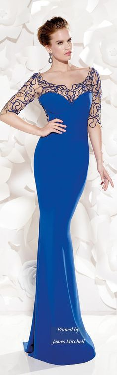 Tarik Ediz 2015 Collection I love the color blue. This is dress is so elegant.
