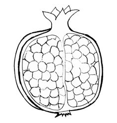 Pomegranate vector image on VectorStock Pomegranate Drawing, Pomegranate Art, Fruit Coloring Pages, Colouring Pages, Coloring Books, Bead Embroidery Jewelry, Beaded Embroidery, Embroidery Patterns, Applique Designs