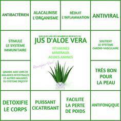 Les Bienfaits du Jus d'Aloe Vera   JUS D'ALOE VERA Le Monde s'Eveille Grâce à Nous Tous ♥
