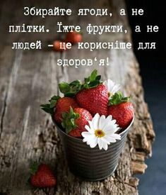 Strawberry, Motivation, Words, Quotes, Quotations, Strawberry Fruit, Strawberries, Quote, Shut Up Quotes