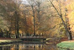 Baarn, Netherlands, nice autumn pictures