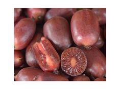Kiwi ´Scarlet September´ Kiwi, Scarlet, Plum, September, Fruit, Food, Essen, Meals, Scarlet Witch