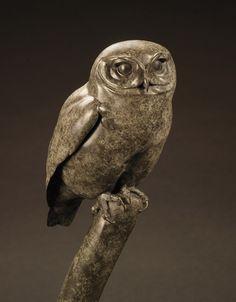 """Nick Bibby """"Little Owl"""" bronze sculpture uil Wood Owls, Wood Bird, Concrete Sculpture, Sculpture Clay, Clay Owl, Owl Artwork, Little Owl, Animal Sculptures, Exotic Birds"""