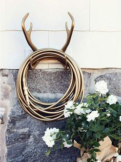 Hose holder. I have more than one set of antlers. Can't wait to try this!