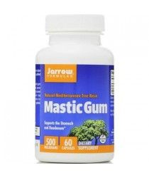 mastic gum for inflammation of stomach lining, mastic gum stomach lini
