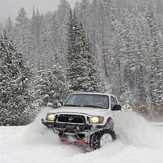 Looks like too much fun. toyota tacoma