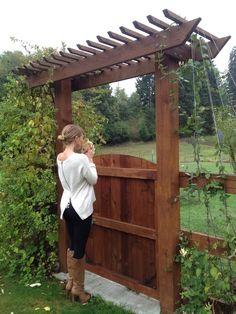 Garden gate with pergola top