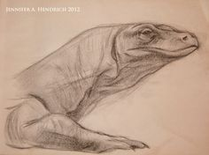 The Art of Jenni Hendrich - Figure Drawing - Komodo Dragon www.jenniferhendrich.com