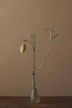 一日一花 川瀬敏郎  2012年6月28日(木)    花=山繭(ヤママユ)、笹(ササ)  器=ローマングラス瓶(ローマ時代):