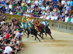 Palio Horse Race in Siena, Italy