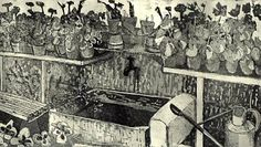 """Watertank with geraniums"" etching 29 x 16cm http://www.themeregallery.co.uk/shop/4577690718/watertank-with-geraniums/8996486"