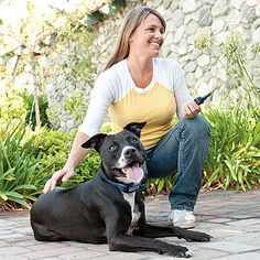 PetSafe remote training systems allow you to communicate with your pet off-leash at the touch of a button. Simple to use and completely safe for your pet, the collars can help you eliminate unwanted behaviors and teach your dog good manners.