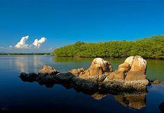 Oaxaca, Chacahua  Entre mar, manglares y cocodrilos, este lugar te incita a disfrutar de la naturaleza. Una playa virgen que regala un amanecer lleno de respuestas y por las noches ofrece aventuras. El sonido de los cocodrilos acompaña los misterios de un manglar que te invita a nadar, ya que el agua, al contacto con el cuerpo produce un fenómeno que aparenta destellos de luz. La cantidad de sorpresas y descubrimientos que puedes llevarte es infinita.