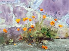 Californian poppies agaist peeling paint wall, Watercolour Giclée print