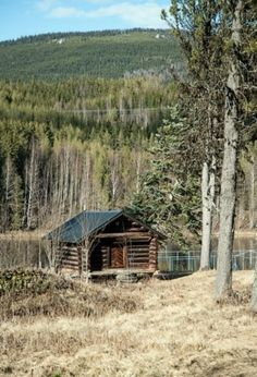 I want this little cabin on this piece of land !!