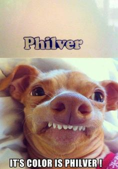 Phteven says it's Philver
