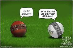 Idees vol vrees, afrikaanse grappe Krieket joke Cricket Quotes, Shellac Colors, Hot Nails, Afrikaans, Laugh Out Loud, Jokes, Humor, Daily Inspiration, Summer