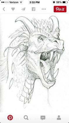 how to draw dragons [ drawing tutorial dragon sketch art ] Animal Drawings, Cool Drawings, Drawing Sketches, Pencil Drawings, Sketching, Cool Dragon Drawings, Drawing Ideas, Drawing Pictures, Fish Drawings
