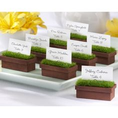 Evergreen Planter Place Card Holder (Set of 4) [528-22020GN Planter Card Holder] : Wholesale Wedding Supplies, Discount Wedding Favors, Party Favors, and Bulk Event Supplies