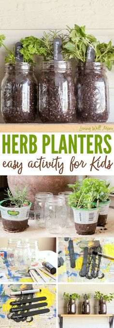 How to make easy herb planters for kids, Herb Planters, Mason Jar Crafts, Garden Starters, Indoor Herb Garden Ideas, Herb Garden Ideas, Kid Garden Ideas, How to Get Kids to Help with Gardens
