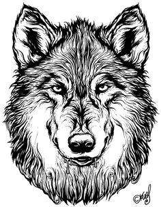 Wolf tattoo by Jarek Kwas Kwaśniak, via Behance