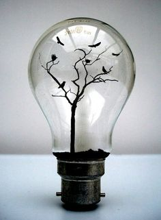 A different take on a light bulb: ideas can grow. light-bulb crafts This is great the way you can use a light bulb more then one thing its a art work on its own. Mini Terrarium, Terrariums, Light Bulb Crafts, Light Bulb Art, Creative Photos, Creative Things, Creative Ideas, Belle Photo, Dark Art