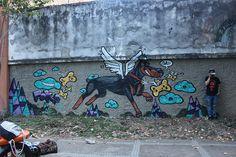 Perro volador de la matea #doberman #happy #dog #graffiti #happiness
