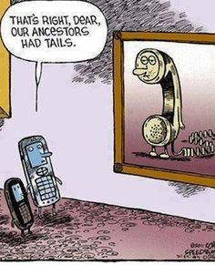 Phone – evolution http://ibeebz.com