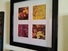 Montford in Autumn. Original photographs. 12 x 12