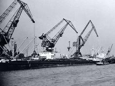 Rotterdam - drijvende kranen in de Waalhaven anno 1957.