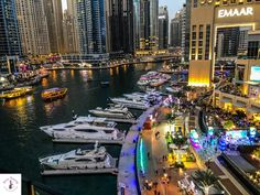 What to do in Dubai at night? The city at night is so much fun! Find out about the very best things to do and best places to visit in Dubai at night. Abu Dubai, Dubai Mall, Dubai Things To Do, Free Things To Do, Fun Things, Dubai Vacation, Dubai Travel, Dubai Attractions, Dubai Aquarium