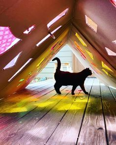 Homemade cathedral cardboard projects kid crafts black cat stained glass window pop-up creative Projects For Kids, Crafts For Kids, Stained Glass Cookies, Glass Art Pictures, Stained Glass Windows, Cathedral, Kitty, Mirror, Creative