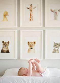 hang pictures of animals in simple white frames for the baby's nursery. Love the simplicity of this for an animal theme nursery. Baby Bedroom, Nursery Room, Boy Room, Girl Nursery, Kids Bedroom, Nursery Decor, Bedroom Art, Nursery Ideas, Deer Nursery