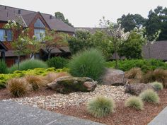 Pacific Landscapes, Sonoma County, Santa Rosa, Commercial landscaping, Landscape Contractor, Maintenance, Renovation, Water management & conservation, Irrigation Analysis & Improvements, Weather-proofing, Landscape construction, Landscape enhancements, Irrigation Repair, Sustainable landscape