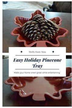 Holidays are here and I'm all about making everything look nice and cozy. This easy diy is something I'll be using this tray during all my hosting. Plus the pinecones make my home smell so nice. | #home #holidays #diy #easydiy #thanksgiving #chritmas #xmas #home #cozy