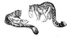 #Leopard #Art