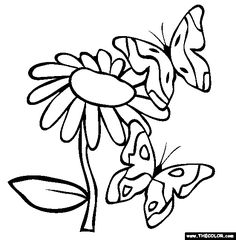 "Butterflies Coloring Page | Free   What a fun thing to do when your sick in bed, and ""sick"" of games."