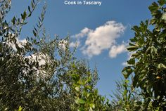 Tuscan skies     www.cookintuscany.com     #Italy #cooking #school #cookintuscany #tuscany #montefollonico #culinary #montepulciano #class #schools #classes #cookery #cucina #travel #tour #trip #vacation #pienza #florence #siena #cook #tuscan #cortona #pienza #pasta #allinclusive #women #underthetuscansun