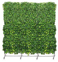PLANT-ED-WALL