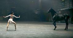 """¿Te gusta la música? ¿Y el baile? ¿Y los caballos? Si has respondido sí a las tres preguntas prepárate para enamorarte. En el otoño de 2012, un cortometraje titulado """"Instinct of Color"""" mostraba los cuatro colores de un esmalte de uñas de la marca OPI. El resultado fue uno de los anuncios más impresionantes que he visto nunca. OPI contrató a a la agencia de publicidad DAN París. Juntos, crearon algo espectacular, que tiene que ver con tus propios ojos. Suzi Weiss-Fischmann, vicepresidenta…"""