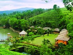 Kerala is a heavenly destination in India. This small piece of land is well known for its enthralling beauty of nature.