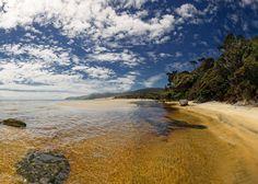 Smoky Beach - Stewart Island, New Zealand. New Zealand Beach, Visit New Zealand, New Zealand Travel, Rest Of The World, Wonders Of The World, Amazing Destinations, Travel Destinations, New Zealand Holidays, The Beautiful Country