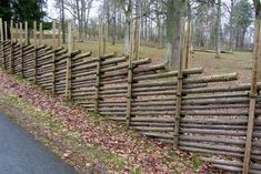 55 Easy and Cheap Privacy Fence Design Ideas /.Adorable 55 Easy and Cheap Privacy Fence Design Ideas /. Cheap Privacy Fence, Privacy Fence Designs, Diy Fence, Fence Landscaping, Backyard Fences, Garden Fencing, Fence Gate, Pool Fence, Horse Fence
