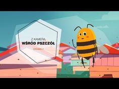Z kamerą wśród pszczół Make It Yourself, Pets, Youtube, Movie Posters, Animals, Short Stories, Camera, Animales, Animaux