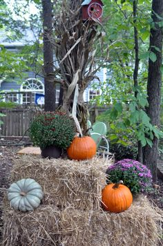 How to plan a fall party- so much fun!