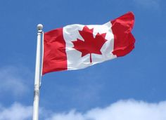 CANADA'S SENATE SET TO TACKLE THE FOOD INDUSTRY