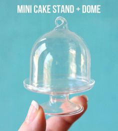 Smallest Cake Stand   Dome